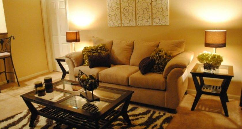 Apartment Living Room Ideas Budget Interior Design