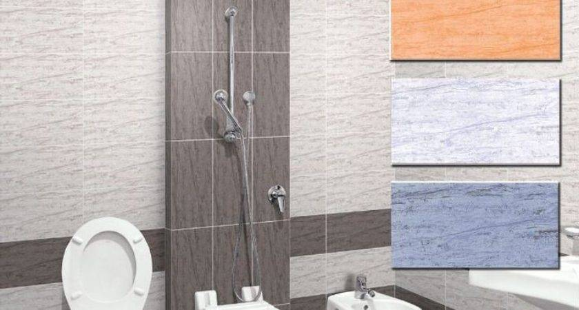 Best Bathroom Designs India Ideas Pinterest