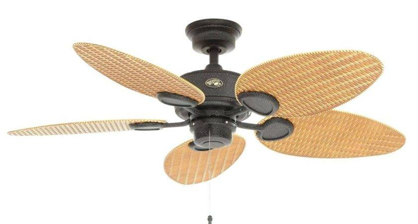 Ceiling Fan Without Blades Large Blade