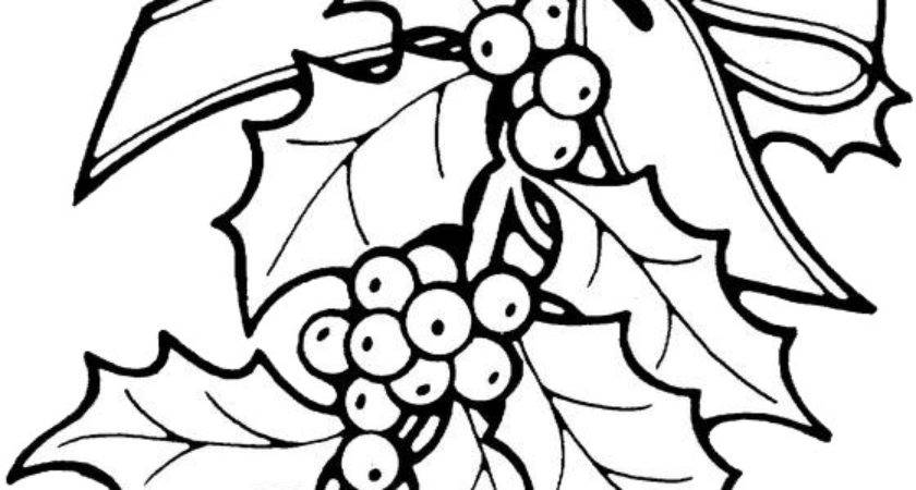 Christmas Flower Color Coloring Pages