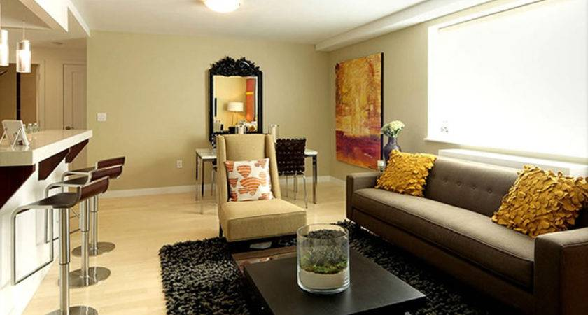 Contemporary Apartment Living Room Furniture Small