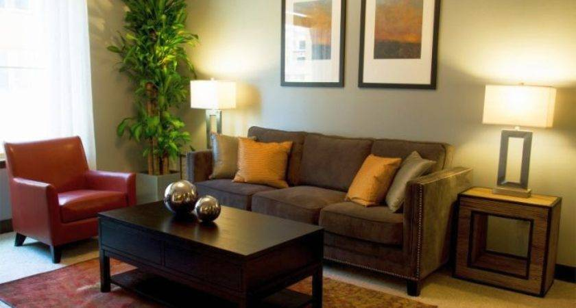 Contemporary Zen Living Room Ideas Small Apartments