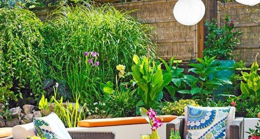 Create Small Outdoor Oasis Ideas Homes