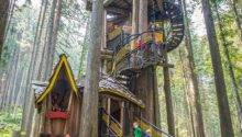 Dream Treehouses Across Canada Explore Awesome