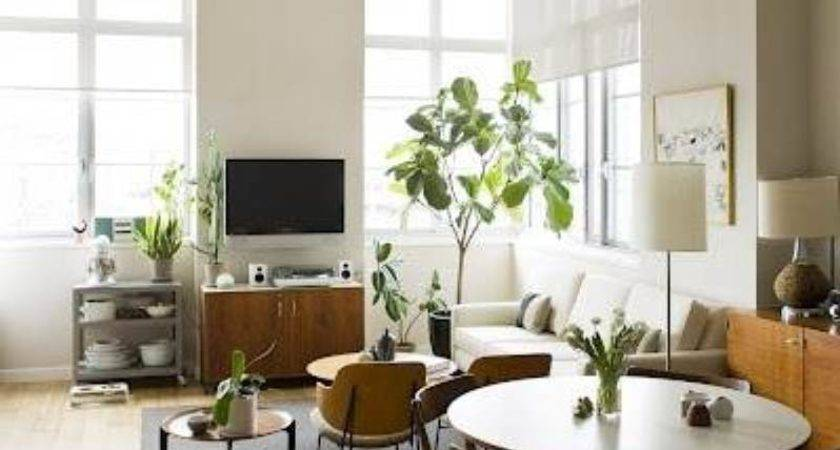 Easy Small Apartment Decorating Ideas Simple
