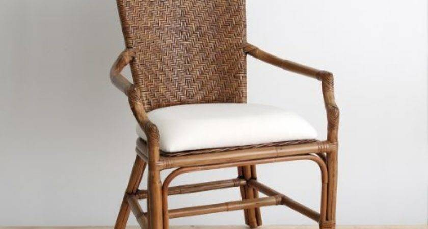 Furniture Amazing Ideas Rattan Dining Chairs Interior