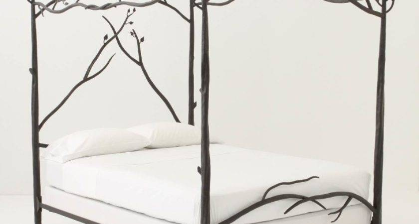 Furniture Tremendeous Iron Canopy Beds Bedroom