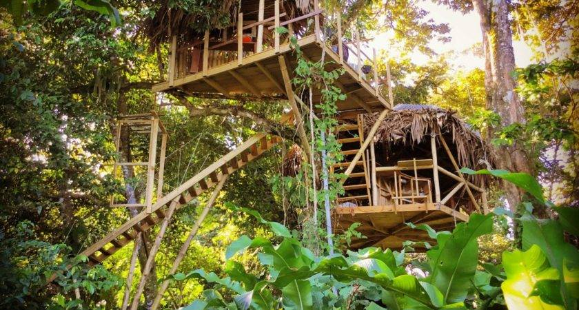 Incredible Treehouse Can Rent