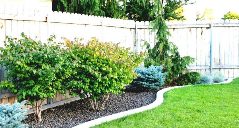 Inexpensive Backyard Landscaping Ideas
