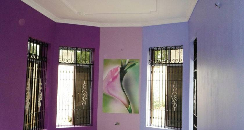 Interior Wall Painting Colour Combinations Living Room