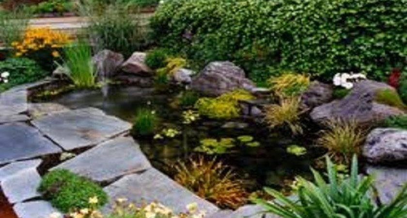 Low Budget Landscaping Ideas Home Design