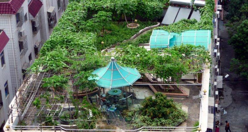 Most Beautiful Roof Gardens Orchidlagoon