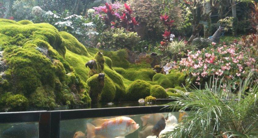 Park Most Beautiful Small Gardens Trends Img
