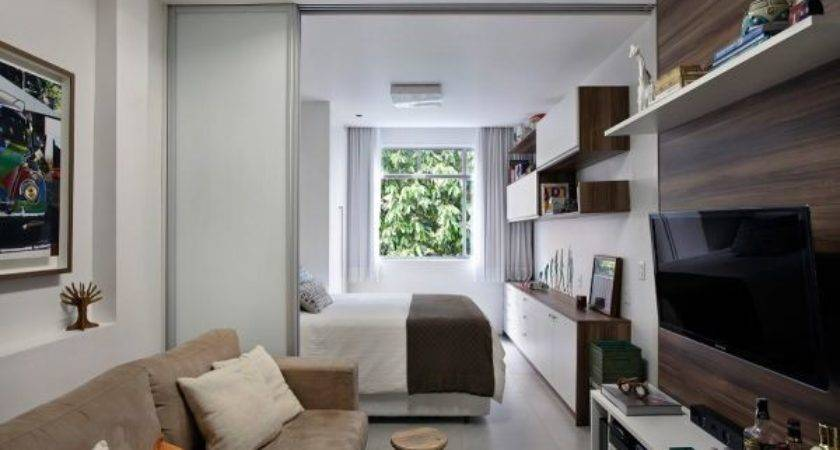 Practical One Bedroom Apartment Linear Layout
