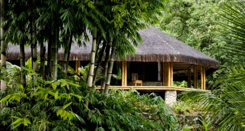 Private Islands Sale Bamboo Jungle House Brazil