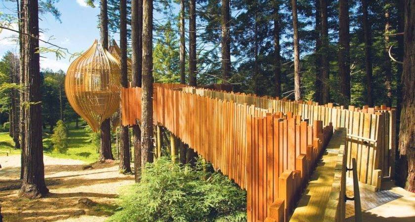 Redwoods Tree House Auckland New Zealand Coolest