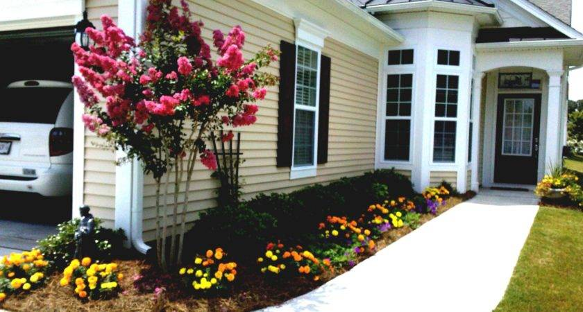 Simple Front Yard Landscaping Budget Garden