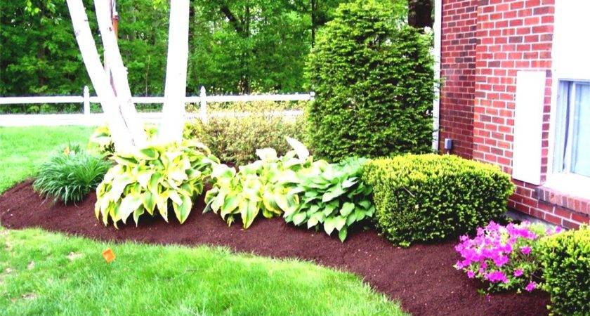 Simple Tropical Landscaping Ideas Budget Goodhomez