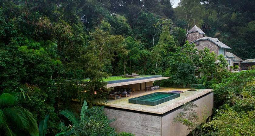 Studio Jungle House Ultimate Treehouse