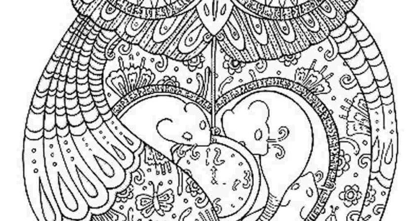 Stylish Adult Coloring Pages