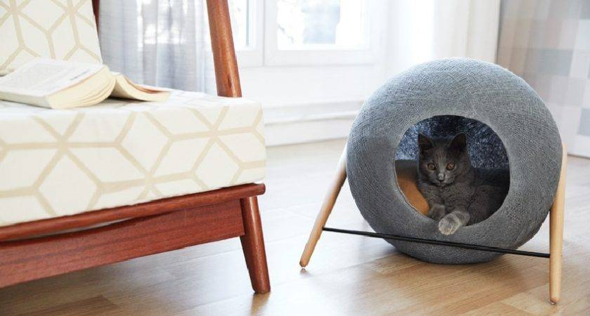 Stylish Cat Beds Cocoons Discerning Pet