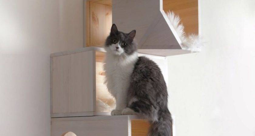 Stylish Modern Cat Trees Design Lovers Styletails