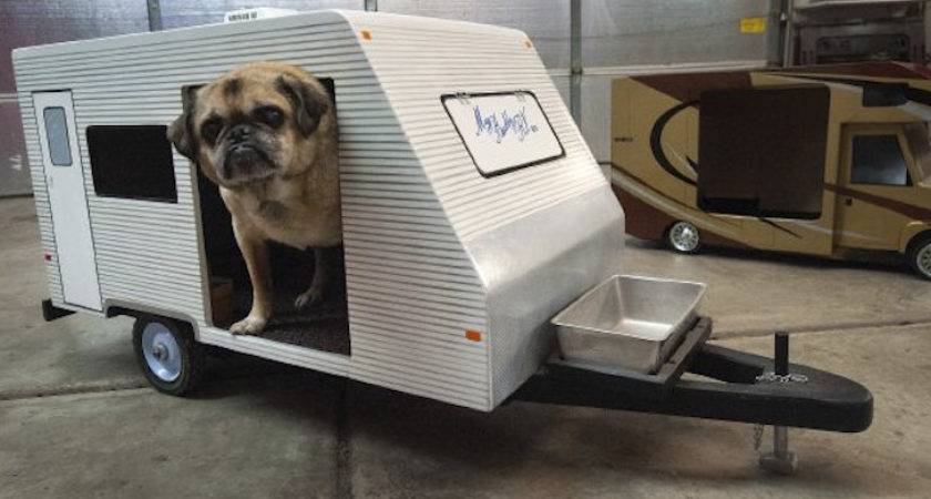 These Dog Houses Look Just Like Your