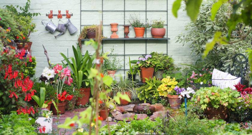 Tips Meant Enhance Your Gardening Backyard