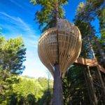 Yellow Treehouse Restaurant New Zealand Top Best